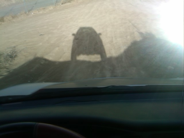 Me and My VX Shadow